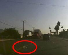 Hombre frena su auto al ver algo raro en la vía, cuando se acerca entiende lo terrible