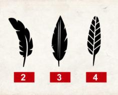 Dime cuál pluma te gusta y te diré un gran secreto de tu personalidad – ¡Te sorprenderá!
