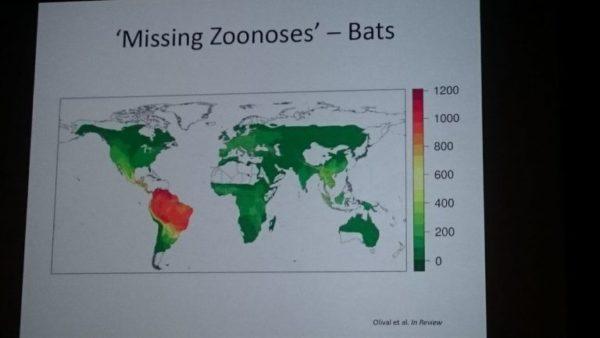 Alerta para la humanidad: América Latina ¨esconde¨ una nueva pandemia global