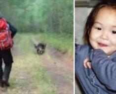 Niña de 4 años desapareció, 11 días después el perro pide que lo sigan y esto fue lo que encontraron
