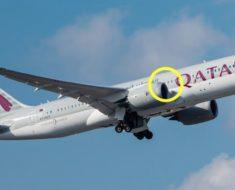 Piloto da la vuelta bruscamente y una familia es expulsada del avión – la razón deja a la cabina en shock