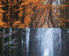 La magia de un mismo lugar en diferentes épocas del año