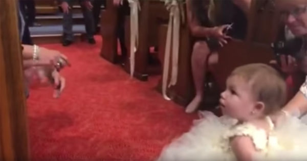 Hija camina hacia la pareja – ahora mira cuando ve a su padre en el altar