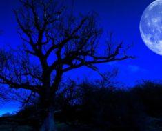 Así afectará la 'Luna Azul' de Enero a cada uno de los signos del zodiaco