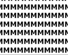 Solo un verdadero genio puede hallar la letra N en la foto: ¿Lo logras en 10 segundos?
