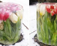 Estas fotos de tulipanes están causando furor en la red – al descubrir por qué quedo boquiabierta