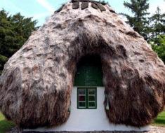 ¡Increíble! Estas casas en Dinamarca están hechas con algas