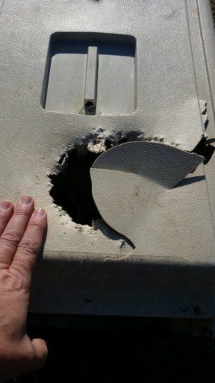 Motoristas hallan una jaula mordida en los matorrales - Al mirar dentro tiemblan con lo que ven