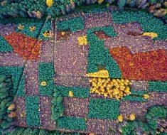 Espectaculares fotos sobre el impacto humano en el medio ambiente visto desde el aire