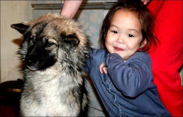 """Hallan un """"Perro congelado en la nieve"""" y corren a ayudarlo – descubren que esconde algo debajo"""