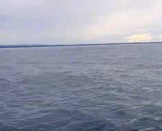 Familia navegaba por el océano, de pronto ven que algo extraño está ocurriendo en el agua…