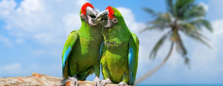 Los 10 sitios turísticos más románticos de México