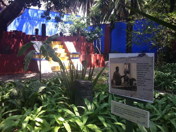 jardines museo frida kahlo
