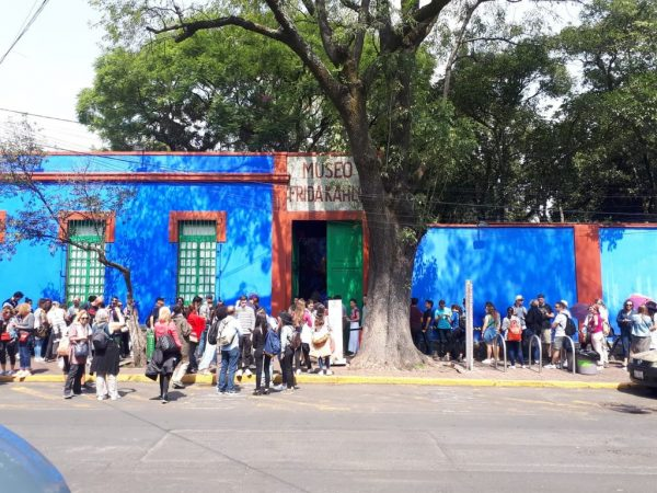 tour museo frida kahlo