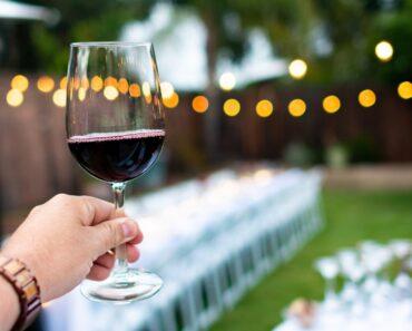 region vinicola do penedes
