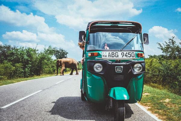 ¿Cómo alquilar tuk tuk en Sri Lanka?